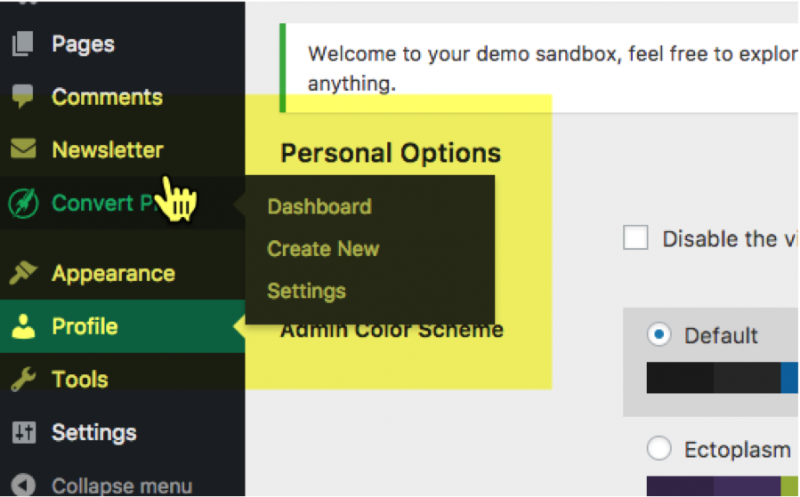 Setting Up the Convert Pro Sandbox 4